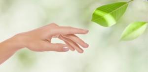 Manicure Płock